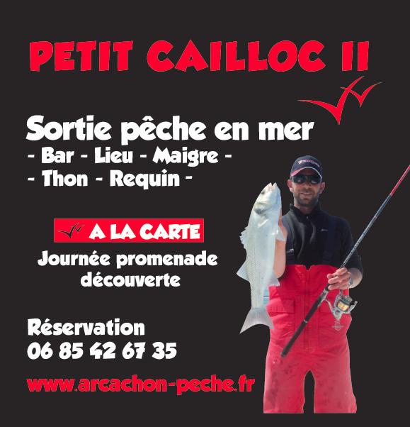 Petit cailloc ii le bassin d 39 arcachon for Bassin a poison